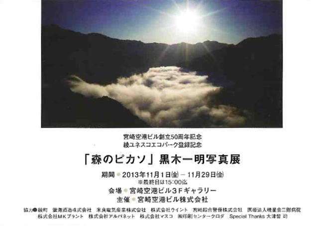 11月に宮崎空港ビルにて写真展「森のピカソ」を開催いたします